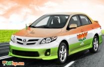 BJP Logo On Car
